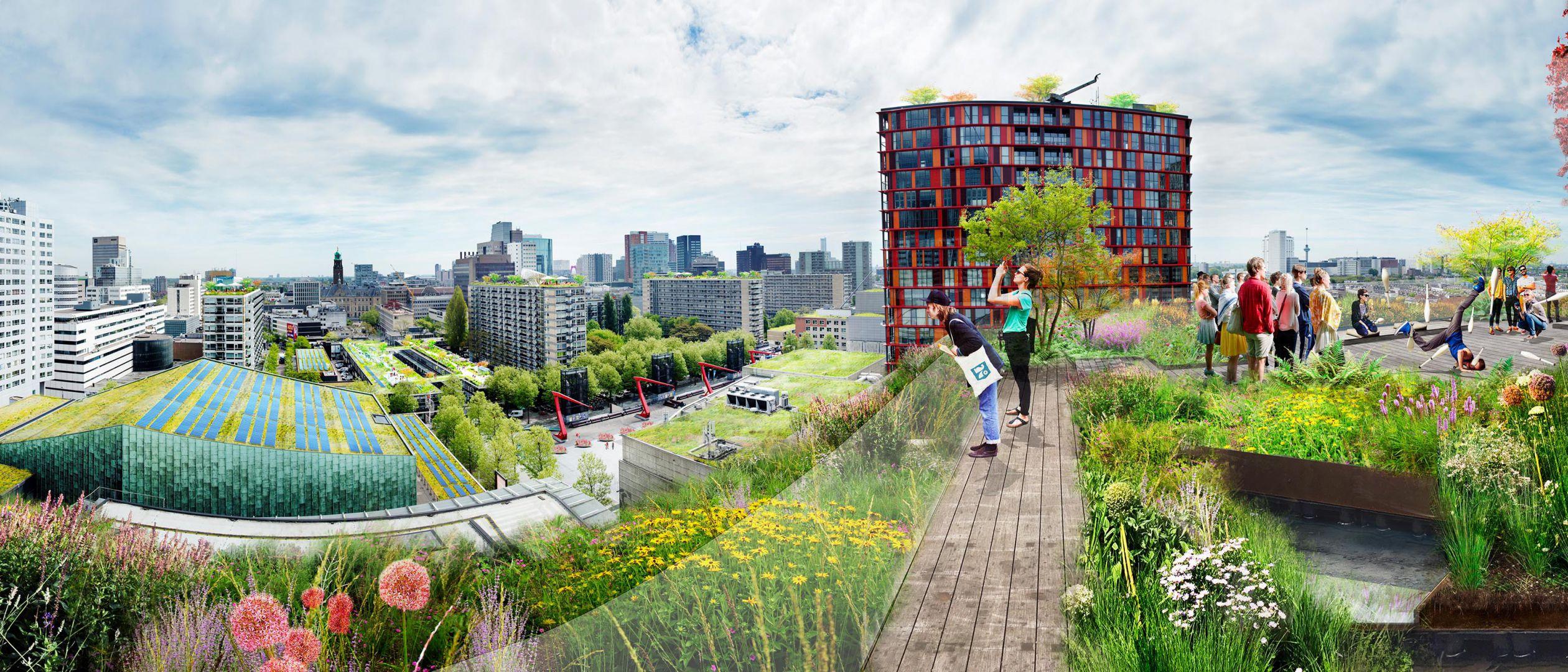 Sustainable Schouwburgplein, Rotterdam