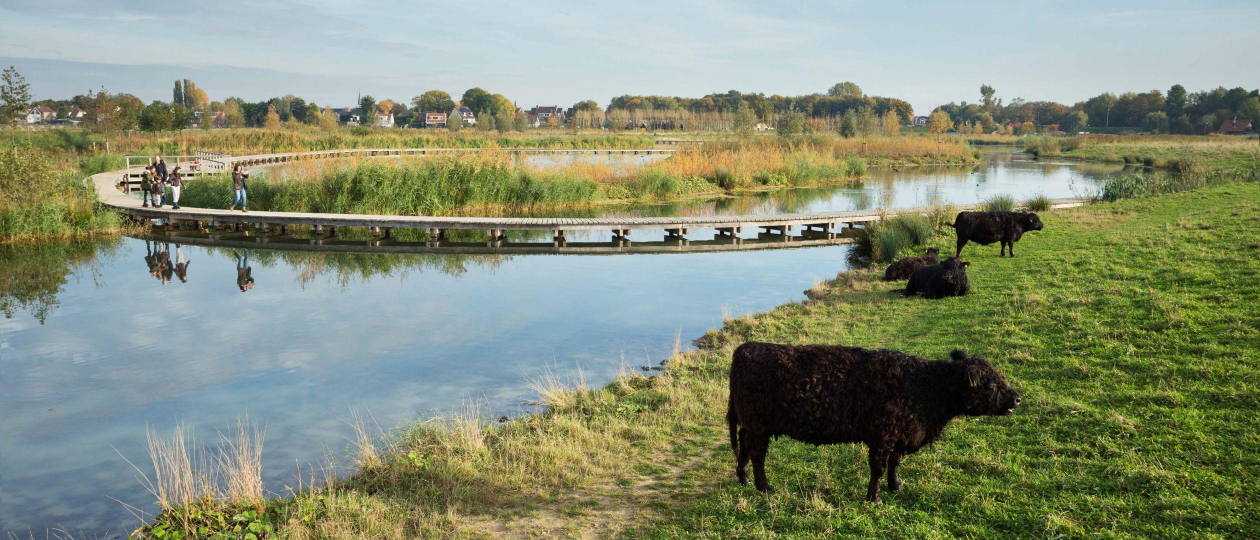 Landschapspark Zuidpolder, Rotterdam Regio, Barendrecht